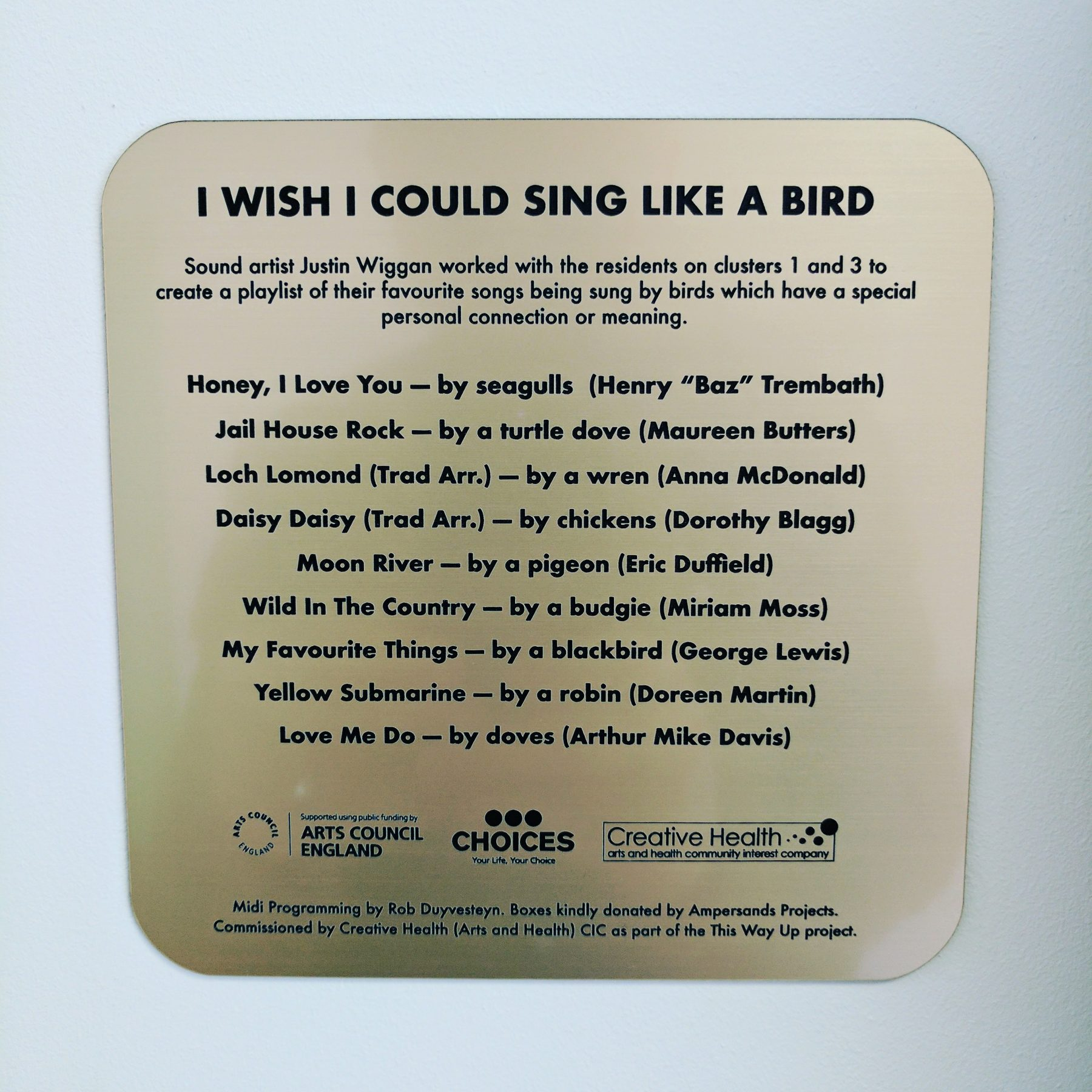 I Wish I Could Sing Like A Bird
